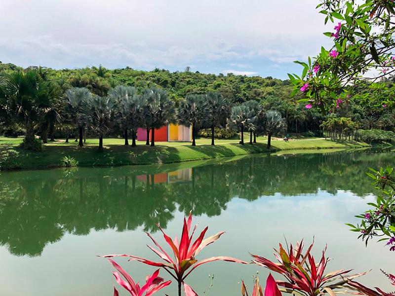 Museu e Jardim Botânico Inhotim (Foto: Tina Bornstein)
