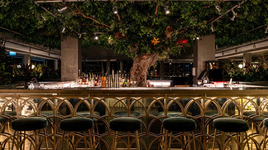 Foto do balcão e da árvore central do Seen Lisboa