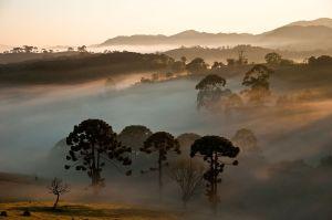 Conheça o Parque Nacional da Serra da Bocaina