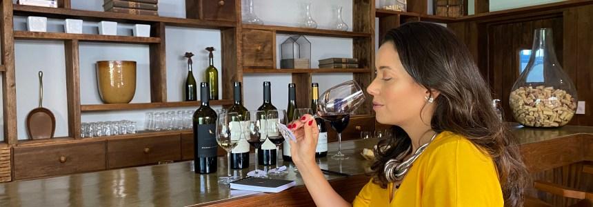 Serra da Mantiqueira e a produção dos melhores vinhos nacionais