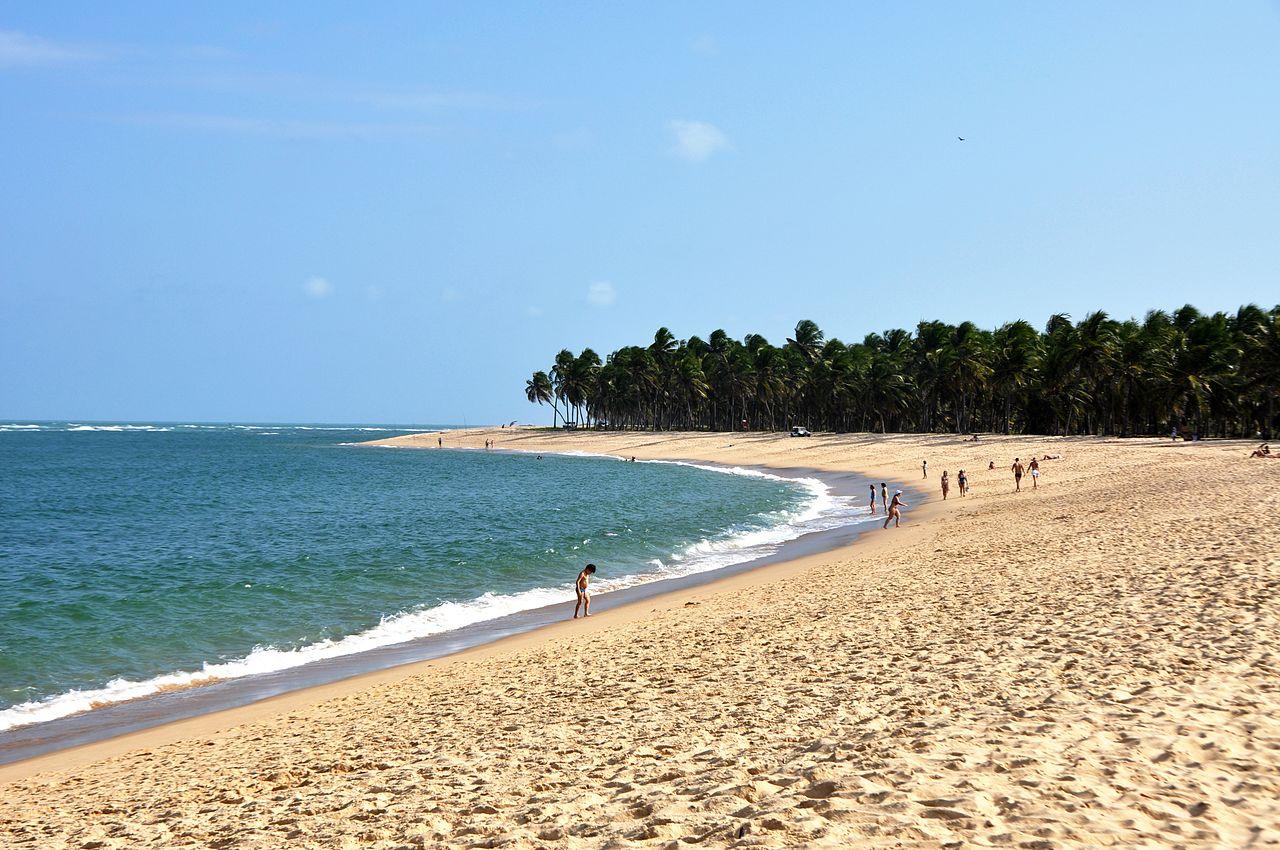 Areias brancas e coqueiros da Praia do Gunga
