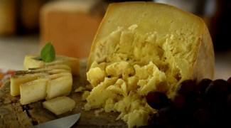 Os melhores queijos da Serra da Bocaina