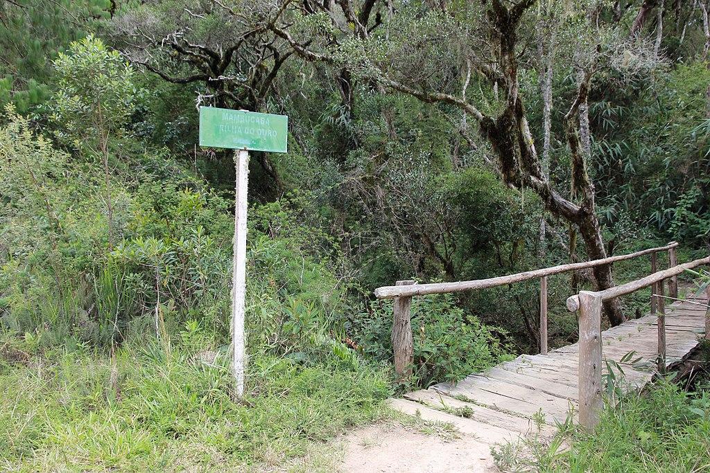 Trilha do Ouro Parque Nacional da Serra da Bocaina