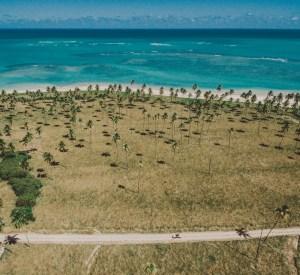 Miniguia prático de São Miguel dos Milagres, em Alagoas, para o Réveillon e feriados