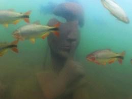 Atração terá obras que dialogam com a preservação ambiental e que servirão de abrigo para os peixes